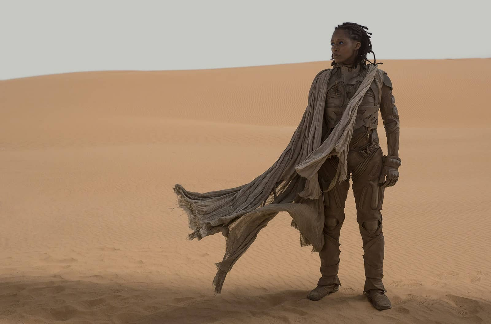 Dune movie cast: here is what you need to know | Buzzwonder