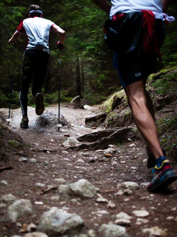 What are the 7 Best Hiking trails for beginners?